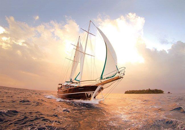 Con thuyền băng gió, lướt sóng ngoài biển khơi
