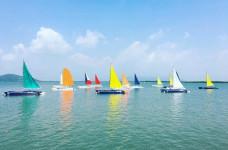 Những cánh buồm no gió ở Marina.